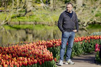 Reizen Waes: Nederland