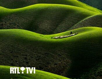 RTL TVI lance sa semaine verte